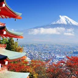 Viatge a Japó. Tradició i...